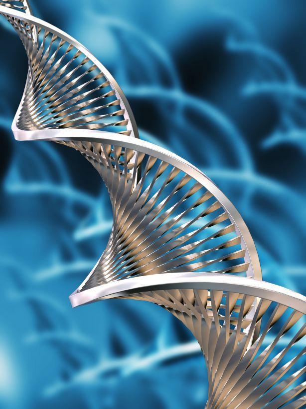 Biotech-IT